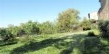 giardino_gino1-0