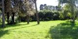 giardino_gino1-1