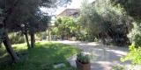 giardino_gino1-6