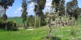 giardino_panevino1