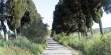 strada-accesso_gino1-1