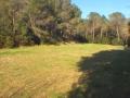terreno_Ferriere1.3