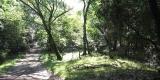 sentiero.parco_SilviaM.2.0