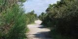 sentiero.parco_SilviaM.2.2