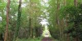 sentiero.parco_SilviaM.2.3