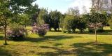 giardino_Silvia2.0