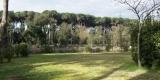 giardino_troncolo1-2