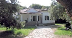 Ferienhaus Noemi, 20 m. vom Sandstrand – Golf von Baratti-Populonia, Livorno