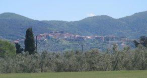 Ferienhäuser in Livorno u. Umgebung – Castagneto Carducci