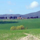 Case e appartamenti vacanze Livorno e Pisa, per tutti i gusti – ItalyMansion.com
